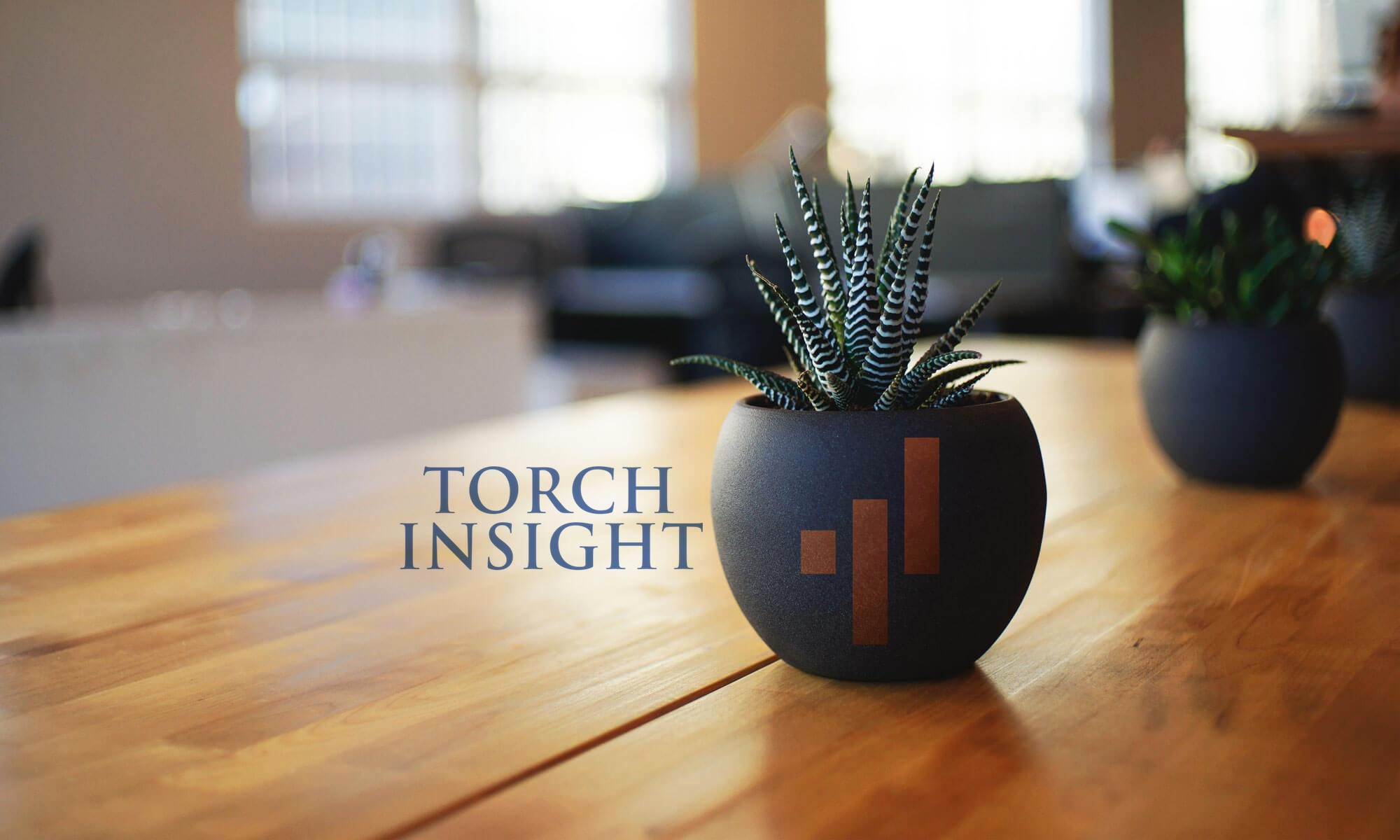 Torch Insight Blog